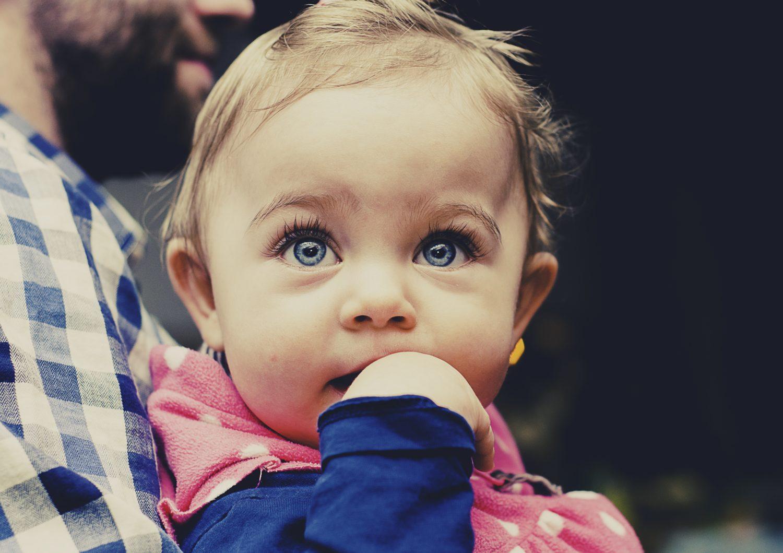Baby fat cute or dangerous stemosphere